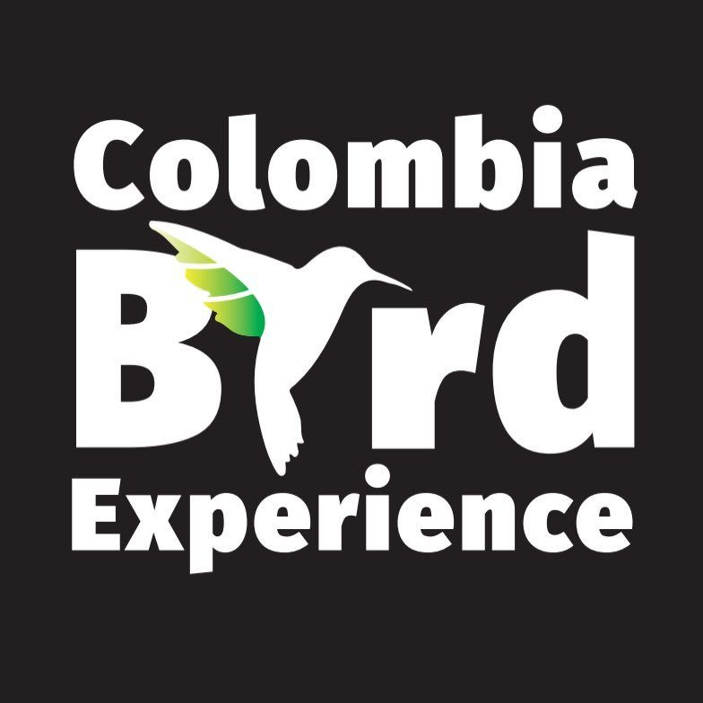 Colombia Bird Experience